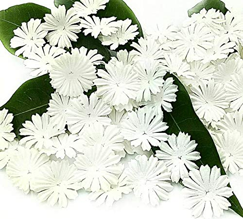 - NAVA CHIANGMAI 100 White Mulberry Daisy Paper Flowers Scrapbooking Embellishment