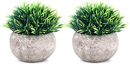 picture of The Bloom Times 2 Pcs Fake Plants for Bathroom/Home
