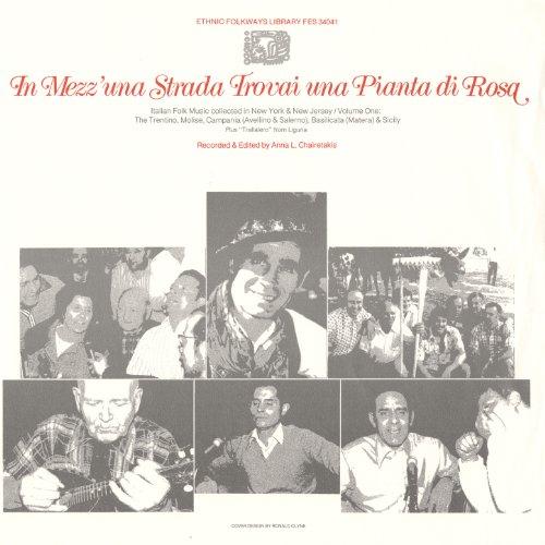 In Mezz'una Strada Trovai una Pianta di Rosa: Italian Folk Music Collected in New York and New Jersey, Vol. 1