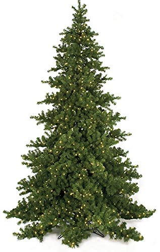 Artificial Nikko Fir Trees with LED Lights, Clear Lights, Or No Lights - Fluff-Free Trees 15 Feet Warm White LED Lights (Nikko Fir Tree)