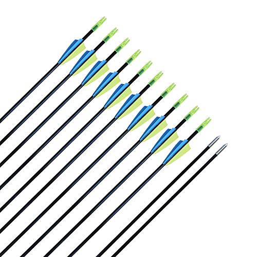 CQ Archery Recurve Bow Arrows Practice and Target Fiberglass Arrows for Beginners or Kids Youth Arrows for Bow-30 inch(12 PCS) (30 Inch Target Practice Arrows)