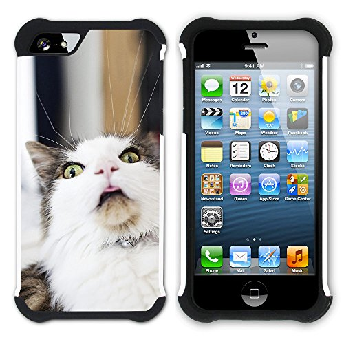 STPlus Gato en una caja Animal Doble Capa de Protección Rígido + Flexible Silicona Carcasa Funda Para Apple iPhone SE / 5 / 5S #18