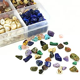 BEADNOVA Natural Chips Gemstone Crystal Pieces Irregular Shaped Loose Beads for Jewelry Making Box Set Value Pack