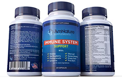 AmNature Immune System Support- superior Anti-Oxidant and Immune system Booster with 20 immune system Vitamins, Minerals, Herbs and other Nutrients, 60 Capsules