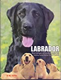 Labrador:Most Intelligent and Excellent family dog (Labrador:Most Intelligent and Excellent family dog)