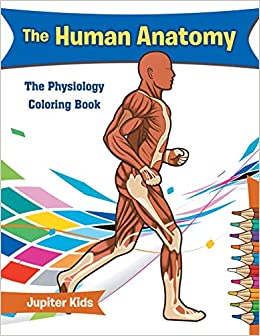 The Human Anatomy: The Physiology Coloring Book: Jupiter Kids ...