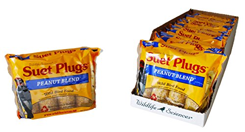 Peanut Blend (Peanut Blend Suet Plugs 4 Pack, Case of 12)