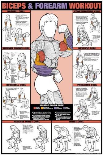 Air Alert Workout Chart 1 Exercises