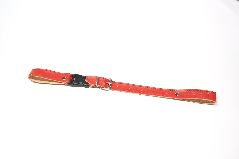 Courroie dorsale 25cm - 38cm Rouge Belti
