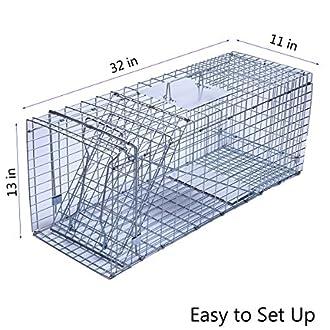 Animal Trap Image