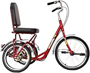 Tricycle for Adults with Basket, 3 Wheel Bikes Adult Seniors Cruiser Bike, Three-Wheeled Bicycles for Women Me
