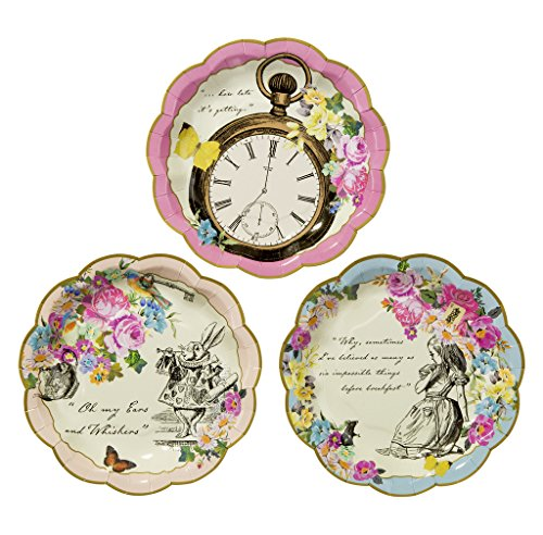 Kids Birthday Party Supplies & Decorations Paper Plates Alice in Wonderland 24 Pack 6.75 inch