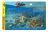 Christ of the Deep & Dry Rocks Reef Key Largo Florida Waterproof Dive Card