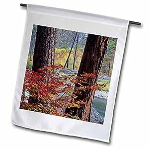Danita Delimont - Autumn - Wenatchee NF, Ponderosa pines, Autumn - US48 JWI1428 - Jamie and Judy Wild - 12 x 18 inch Garden Flag (fl_95999_1)