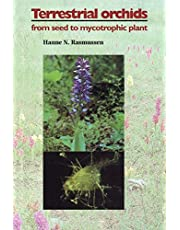 Terrestrial Orchids: From Seed to Mycotrophic Plant
