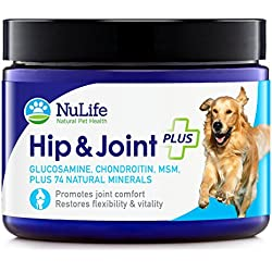 NuLife Natural Pet Health - Glucosamine Chondroitin for Dogs with MSM & Organic Coral Calcium - Hip and Joint Supplement for Arthritis Pain Relief & Improved Mobility - 6oz Powder