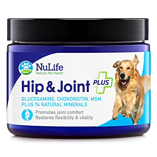 NuLife Natural Pet Health - Glucosamine Chondroitin for Dogs with MSM & Organic Coral Calcium - Hip and Joint Supplement for Arthritis Pain Relief & Improved Mobility - 6oz Powder (Pet Naturals Extra Strength compare prices)