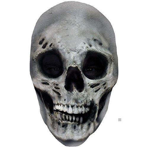Skull Nylon Full Mask Costume Mask Adult (Skull Nylon Full Mask)