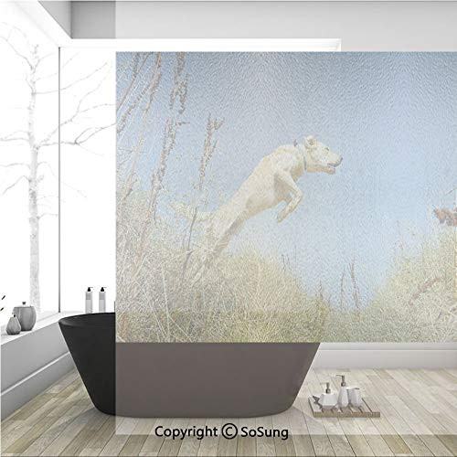 3D Decorative Privacy Window Films,Purebred Labrador Retriever Jumping in a Field Blue Sky Rural Outdoors Photo Decorative,No-Glue Self Static Cling Glass film for Home Bedroom Bathroom Kitchen - Tile Box Labrador