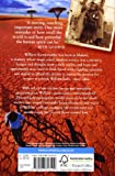 Front cover for the book The Boy Who Harnessed the Wind by William Kamkwamba