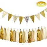 Party Decoration Kit,8.2 Feet Sparkly Paper Pennant Banner and 15 PCS Tissue Paper Tassel Garland Party Favors DIY Kits for Wedding,Birthday,Wedding,Christmas Party Decor (Style 1)