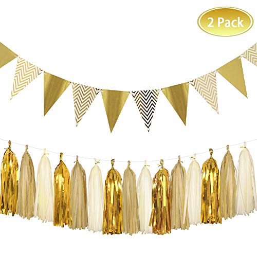 Party Decoration Kit,8.2 Feet Sparkly Paper Pennant Banner and 15 PCS Tissue Paper Tassel Garland Party Favors DIY Kits for Wedding,Birthday,Wedding,Christmas Party Decor (Style 1) -