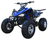 Saferwholesale 150CC Coolster ATV Fully Automatic
