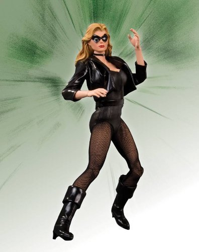 DC Comics Black Canary 1:6 Scale Deluxe Collector Figure 13 Inch Collectors Action Figure
