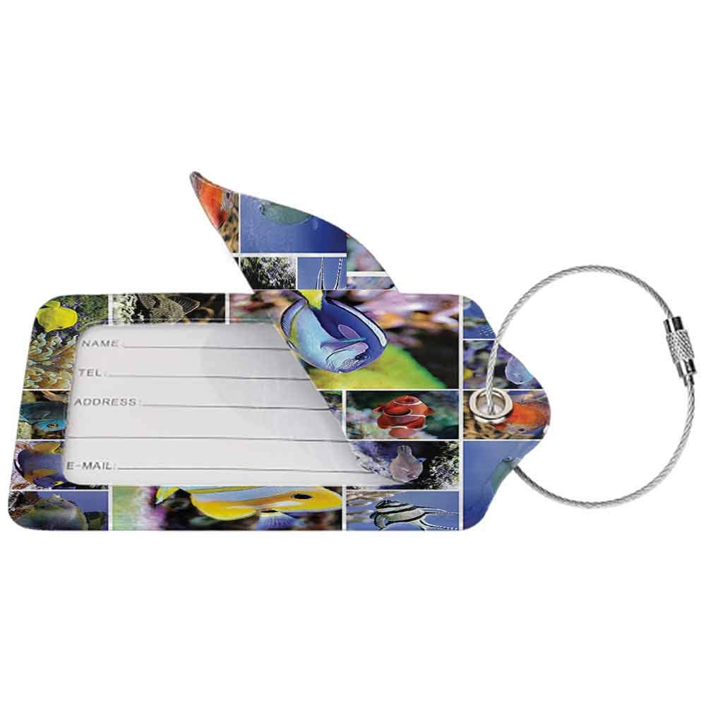 Small luggage tag Tropical Fish Collage of Underwater Photos with Collection of Sea Animals Theme and Decorating Art Print Quickly find the suitcase for Bathroom W2.7 x L4.6