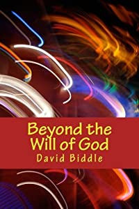 Beyond the Will of God: A Jill Simpson Mystery by David Biddle (2012-07-04)