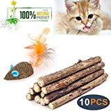 Cat Catnip Sticks Natural Matatabi Silvervine Sticks - Cleaning Teeth Molar Tools Kitten Cat Chew Toy Natural Catnip Mouse Cat Toy (10 PCS)