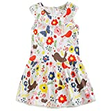 Frogwill Toddler Girls Fifties Summer Dress Blue Rainbow 2-7Y (5T, Garden)