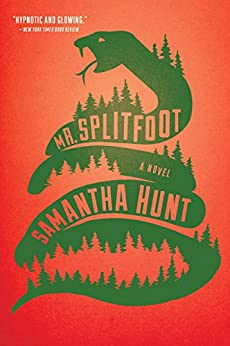 Mr. Splitfoot by [Hunt, Samantha]