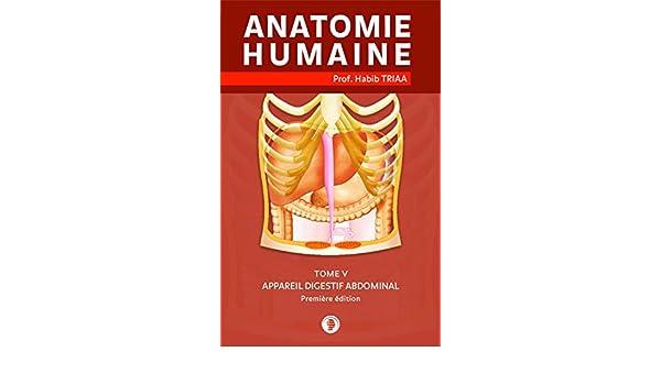 Amazon.com: Anatomie de l\'appareil digestif abdominal (French ...