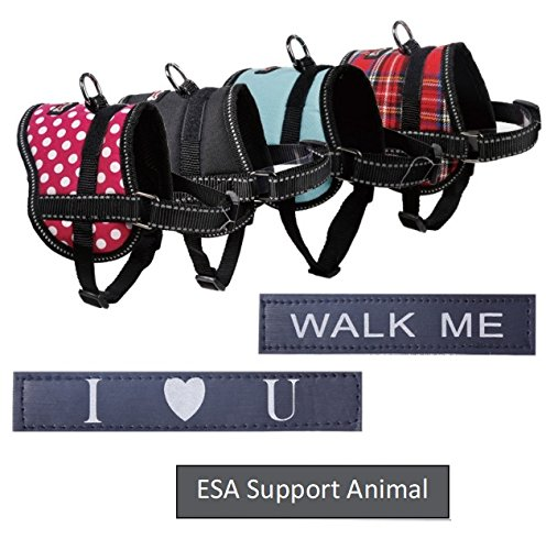 Register My Service Animal, LLC Emotional Support Animal Harness & Matching Leash Set For Small & Teacup Dogs | Three Fun Patches | Four Colors | Three sizes: 11'' - 19'' Girth