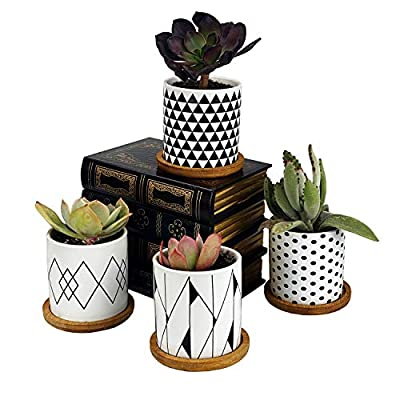 ALLFEIYA Succulent Plants Pots,3.2 Inch Flower Pots Geometry Pots for Plants Planter Pots Indoor&Outdoor Ceramic Plants Pots for Cactus with Drain Hole and Bamboo Tray,Perfect Gift Idea Set of 4: Garden & Outdoor