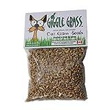 Giggle Grass Oat Grass Seeds 125 gm