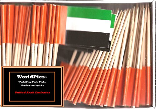 One Box United Arab Emirates Toothpick Flags, 100 Small Mini Emirati UAE Flag Cupcake Toothpicks or Cocktail Picks