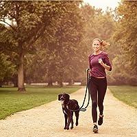 4GUYS Control total, multifunción, correa de perro manos libres ...