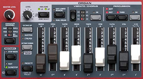 AMS-NELECTRO6D-73 Keyboard with 73-note Semi-Weighted Waterfall Keybed