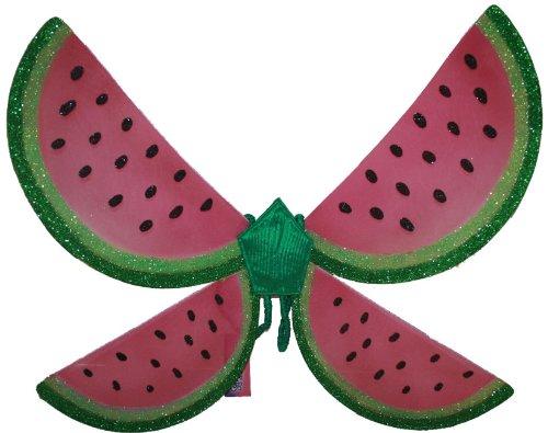 Girls Watermelon Fairy Wings - (Watermelon Wings)