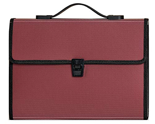 EIGenS 13 Pockets Expanding File Folder with Handle One Extra Pocket On The Back - A4 Size Expandable File Organizer File Folder Wallet Briefcase Documents Filing Box (Bordeaux Red, 13 Pockets)
