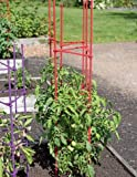 59'' Happy Harvest Plant Supports, Set of 3
