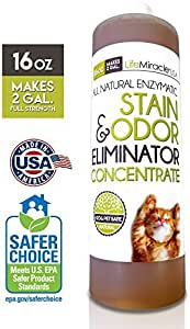 Life Miracle Enzyme Cleaner & Pet Odor Eliminator Concentrate | Deep Cleaning Enzymatic Spot Remover for Dog Cat Urine, Rug, Carpet, Upholstery, Couch & Car Stains & Smells | Makes 2 GALLONS