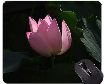 Yanteng Cojín de ratón Floral del Juego de la Flor de Zen ...