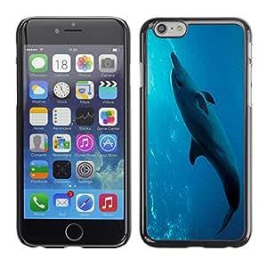 - Dolphins - - Monedero pared Design Premium cuero del tir¨®n magn¨¦tico delgado del caso de la cubierta pata de ca FOR Apple iPhone 6 6S 4.7 Funny House