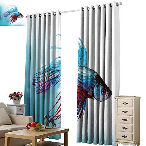 (Beihai1Sun Digital Print Curtain for Decoration Aquarium Siamese Fighting Betta Fish Swimming in Aquarium Aggressive Sea Animal Sky Blue Dark Coral for Living Room Bed Room W72 x H108)