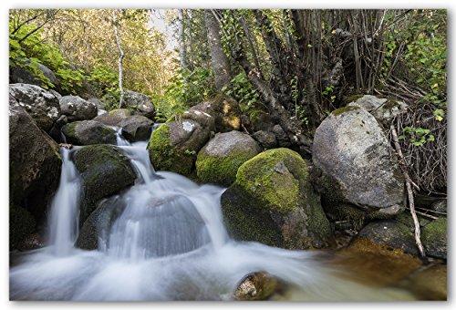 Moss Covered Rocks - 5