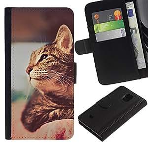 EuroCase - Samsung Galaxy S5 Mini, SM-G800, NOT S5 REGULAR! - ocicat chausie savannah cat shorthair - Cuero PU Delgado caso cubierta Shell Armor Funda Case Cover