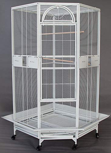 "64"" Large Corner Cage for Cockatiel Parakeet Budgies Parrot"